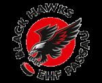 Logo EHF Passau